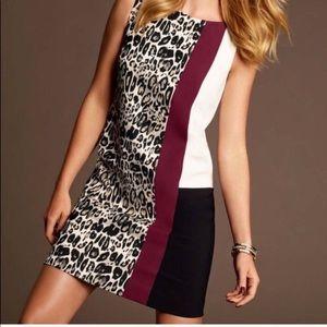 Ann Taylor Leopard Color Block Career Dress